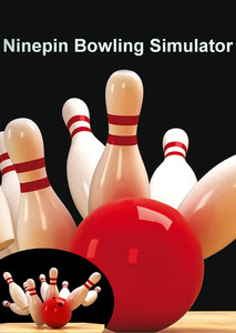 Packaging of Ninepin Bowling Simulator 2013 [PC]