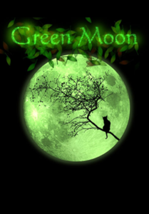 Verpackung von Green Moon [PC]