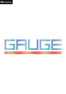Packaging of Gauge [PC]