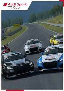 Packaging of Raceroom Audi Sport TT cup 2015 [PC]