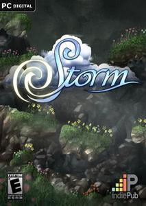 Packaging of Storm [PC]
