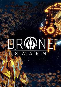 Verpackung von Drone Swarm [PC]