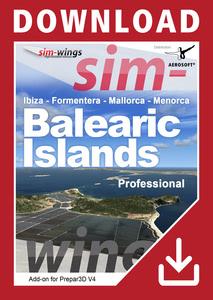 Packaging of Prepar3D V4 Balearic Islands professional [PC]