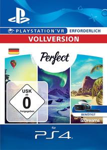 Verpackung von Perfect - deutsches PSN-Konto [PS4]
